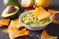 Sauce guacamole, nachos chips and ingredients. Horizontal Royalty Free Stock Photo