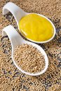 Sauce and seeds of yellow mustard - Sinapis alba Royalty Free Stock Photo