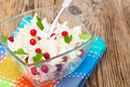 Sauerkraut with cranberries  in a glass bowl on a wooden backgro Royalty Free Stock Photo