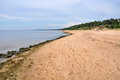 Saulkrasti baltic sea latvia which is about km from riga capital of sand dunes erosion coast Stock Photo