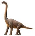 Sauropod dinosaur Royalty Free Stock Photo