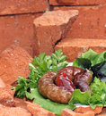 Sausages fried decorated with dill parsley basil lie the ruins of red bricks Royalty Free Stock Photo
