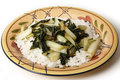 Sauteed bok choi on a bed of jasmin rice side view plate with asian cabbage chopped and with sesame oil and soy sauce served white Stock Images