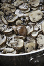 Sauteed mushrooms stainless steel saute pan with slice crimini and olive oil Stock Photo
