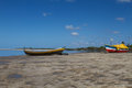 Savannah scape in beira mozambique africa travel to Royalty Free Stock Image