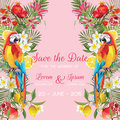 Save the Date Wedding Card with Tropical Flowers, Fruits, Parrot Birds. Floral Background Royalty Free Stock Photo