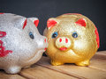 Saved pig bowl for saving money your life and luck for the future Royalty Free Stock Photography