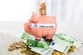 Saving concept. Piggy bank with an inscription life insurance