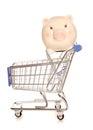 Saving money on your shopping Royalty Free Stock Photo