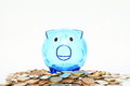 Saving pig standing on lots of money blue empty savings czech crowns Stock Photography