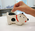Saving your money coins in hand drops into a piggy bank shaped like a puppy Stock Image