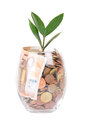 Savings in glass euro banknotes and coins as with growing plant inside Stock Photography