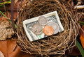 Savings Nest Egg Stock Image