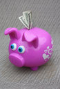 Savings in a Piggy Bank Royalty Free Stock Photography