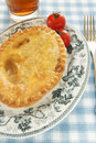 Savoury pie a golden on an antique plate and blue check table cloth glass of beer in the background Royalty Free Stock Photography