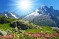 Savoy Alps Royalty Free Stock Photo
