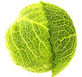 Savoy cabbage isolated on white Stock Photos