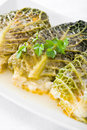 Savoy cabbage rolls on white dish. Stock Photography
