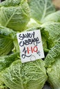 Savoy cabbage vegetable for sale priced at euro per kg Royalty Free Stock Photos