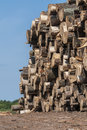 Saw logs pile of at a missouri usa amish sawmill with a blue sky Stock Images