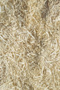 Sawdust background fresh wood texture remainings Stock Photos