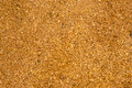 Sawdust floor covering from Stock Photo