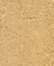 Sawdust texture to background Royalty Free Stock Image