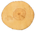 Sawn pine wood Royalty Free Stock Photo