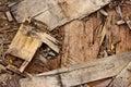 Sawn Wood Cut Piled Perfectly