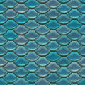 Scale seamless fish background close up Stock Images