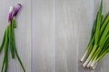 Scallions Surround Copy Area on Wooden Background Royalty Free Stock Photo