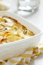 Scalloped potatoes see my other works in portfolio Royalty Free Stock Images