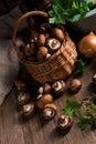 Scaly wood mushroom a fresh and tasty Royalty Free Stock Image