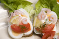 Scandinavian open type sandwiches Stock Photography