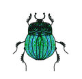 Scarab Beetle Vector Royalty Free Stock Image