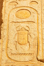 Scarab hieroglyph in the temple of queen hatshepsut egypt Stock Image