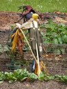 ScareCROW ! Royalty Free Stock Photo