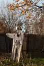 Scarecrow for the birds in garden Royalty Free Stock Photos