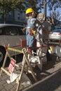 Scarecrow Contest Royalty Free Stock Photo