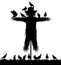Scarecrow editable vector silhouette of a flock of pigeons on a with all figures as separate objects Stock Photography
