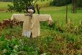 Scarecrow in the garden Royalty Free Stock Photography