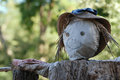 Scarecrow in a garden against the birds Stock Photo