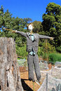 Scarecrow in garden at fall Royalty Free Stock Photo