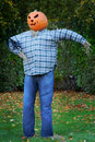 Scarecrow With Jack o' Lantern Head Stock Photography