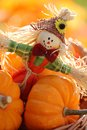 Scarecrow and little pumpkins on defocised autumn background Royalty Free Stock Images