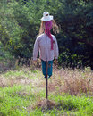 Scarecrow photo of cute in the field Royalty Free Stock Image