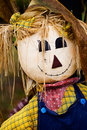 Scarecrow Portrait Royalty Free Stock Photos
