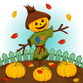 Scarecrow with a pumpkin head Royalty Free Stock Photo