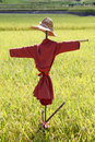 Scarecrow on the rice field in japan Stock Photo