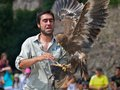 Scared Bird Trainer
